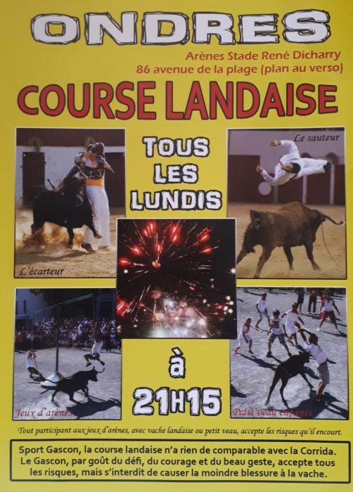 Courses de vaches landaises